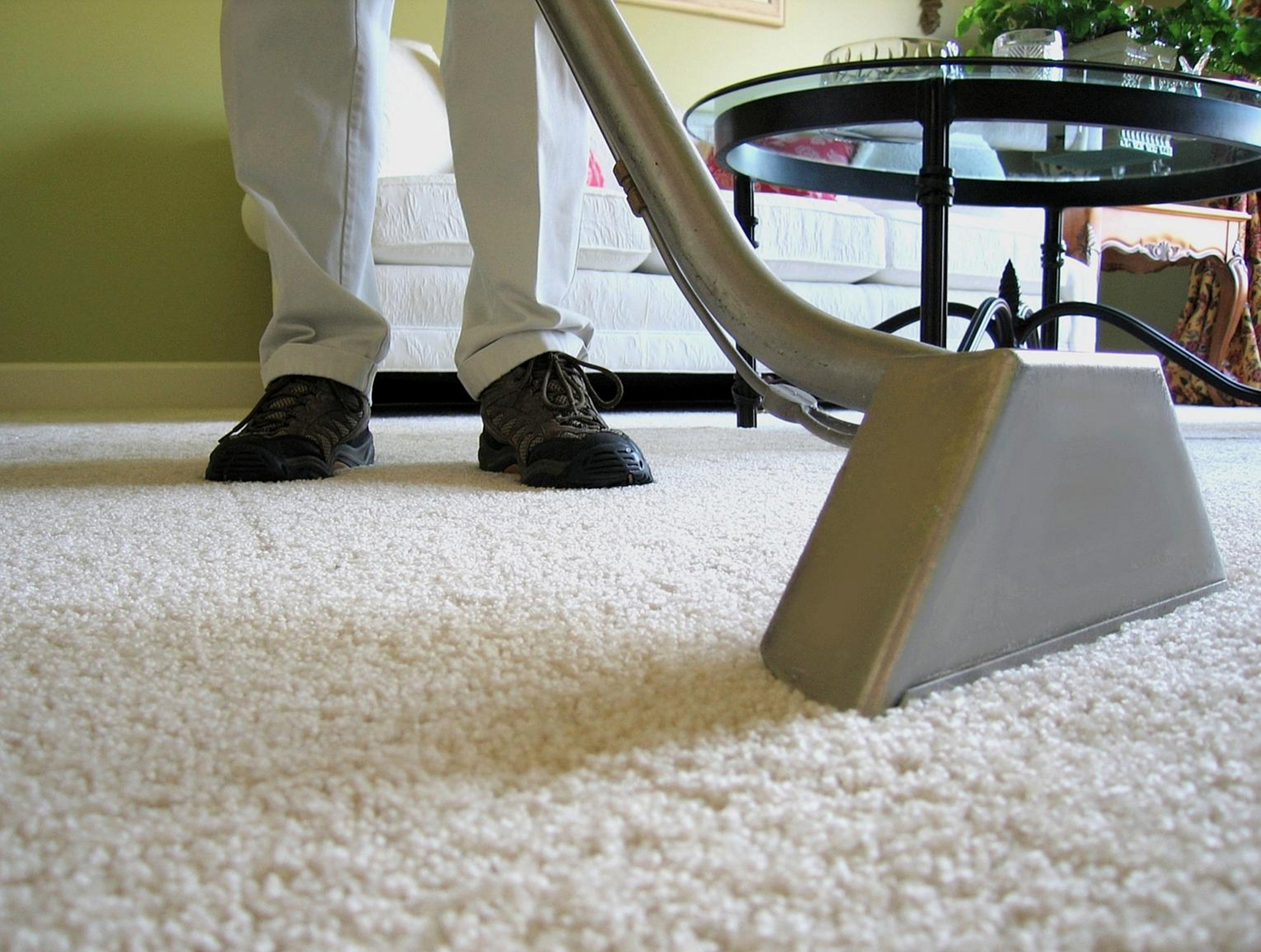 Carpet cleaning business that understands everything about carpet cleaning and improvements in the same area.